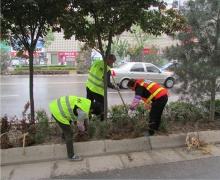 春季绿化养护
